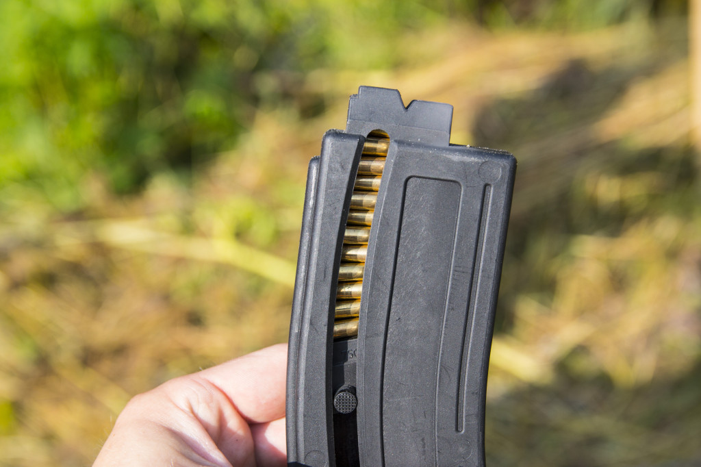 chiappa mag and the follower